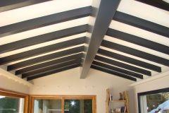 plafond carenia noir